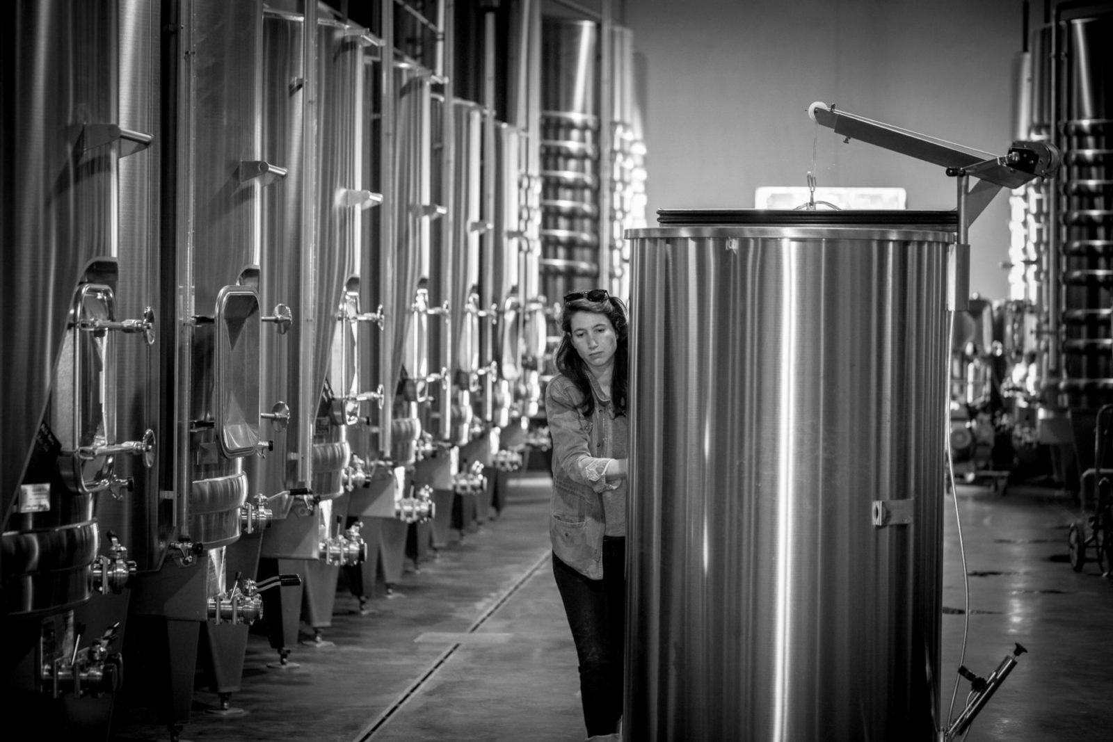 Terroir - Garde de vin